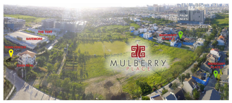 mulberry_arial